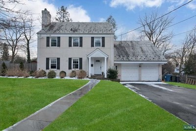 Tenafly NJ Single Family Home For Sale: $1,100,000