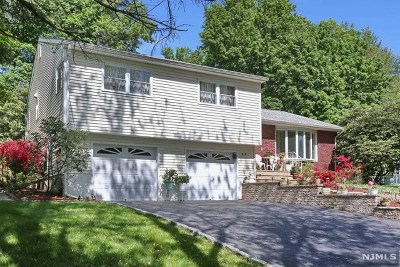 River Vale NJ Single Family Home For Sale: $529,000