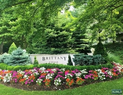 Passaic County Condo/Townhouse For Sale: 320 Brittany Drive #320