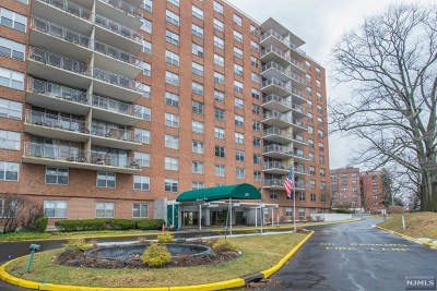 Hackensack Condo/Townhouse For Sale: 301 Beech Street #2e
