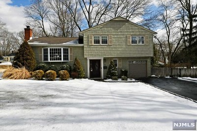 Hillsdale NJ Single Family Home For Sale: $475,000