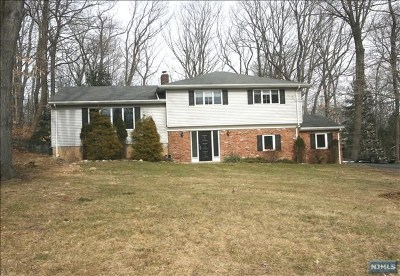 Upper Saddle River Single Family Home For Sale: 49 Pleasant Avenue