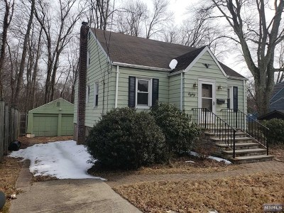 Hillsdale Single Family Home For Sale: 80 Beech Street