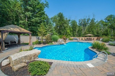 Morris County Single Family Home For Sale: 278 Long Meadow Road