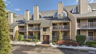 East Rutherford Condo/Townhouse For Sale: 905 River Renaissance