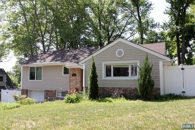 Tenafly Single Family Home For Sale: 196 Riveredge Road