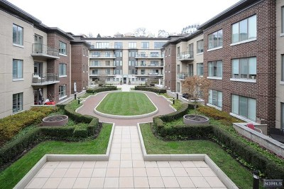 Weehawken Condo/Townhouse For Sale: 250 Henley Place #312