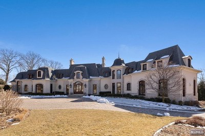 Franklin Lakes Single Family Home For Sale: 9 Mill Brook Lane