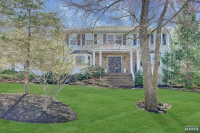 Morris County Single Family Home For Sale: 13 Weiss Drive