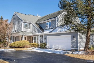 Morris County Condo/Townhouse For Sale: 118 Ridge Drive