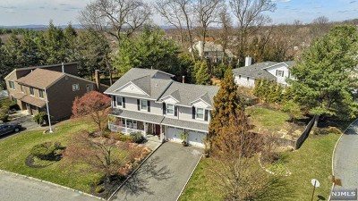 Wayne Single Family Home For Sale: 20 Point View Parkway