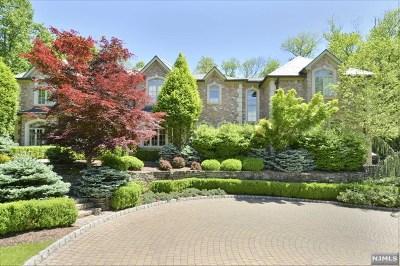 Saddle River Single Family Home For Sale: 50 East Saddle River Road