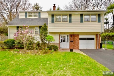 Demarest Single Family Home For Sale: 63 Stewart Street