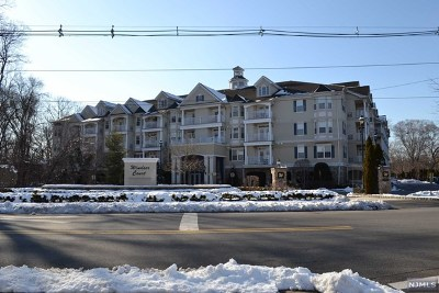 Rochelle Park Condo/Townhouse For Sale: 175 Rochelle Avenue #114