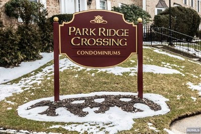 Park Ridge Condo/Townhouse For Sale: 133b South Maple Avenue #B