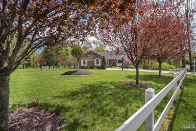 Little Falls Single Family Home For Sale: 168 Wilmore Road