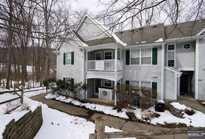 Morris County Condo/Townhouse For Sale: 502 Chatfield Drive