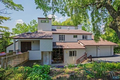 Woodland Park Single Family Home For Sale: 843 Rifle Camp Road