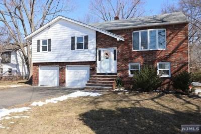 Leonia Single Family Home For Sale: 41 Ray Avenue