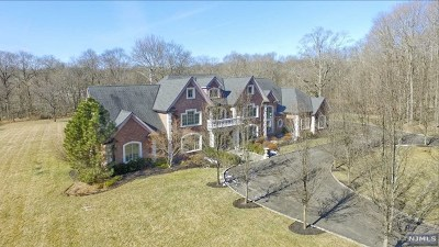 Saddle River Single Family Home For Sale: 5 Willow Pond Road