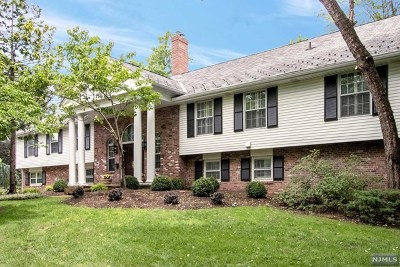 Tenafly Single Family Home For Sale: 30 Lancaster Road
