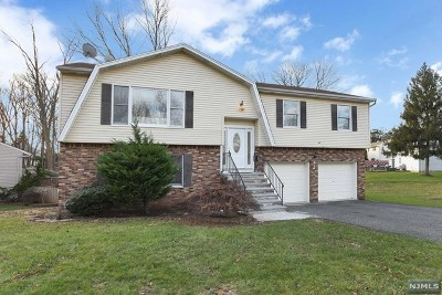 New Milford Single Family Home For Sale: 314 Kastler Court