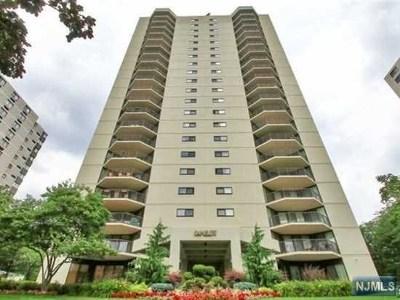 Hackensack Condo/Townhouse For Sale: 245 Prospect Avenue #14d