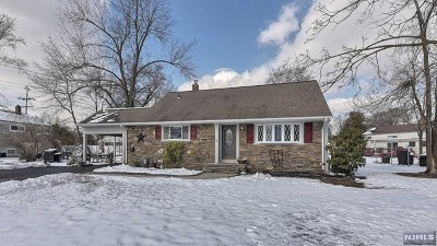 Morris County Single Family Home For Sale: 15 Frances Road