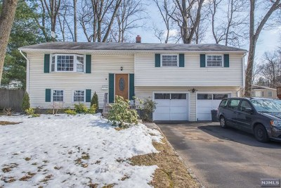 Essex County Single Family Home For Sale: 10 Garnet Terrace