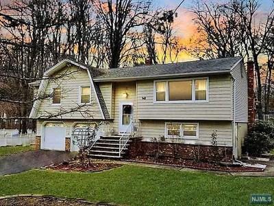 Ringwood Single Family Home For Sale: 48 Olive Lane