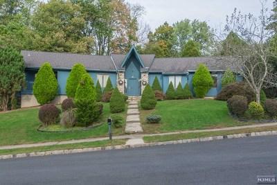 Passaic County Single Family Home For Sale: 55 Teak Road