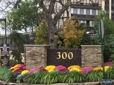 Cliffside Park Condo/Townhouse For Sale: 300 Winston Drive #515