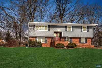 Morris County Single Family Home For Sale: 20 Louis Drive