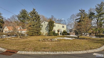 Morris County Single Family Home For Sale: 22 Romondt Road