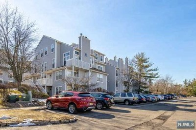 Englewood Condo/Townhouse For Sale: 43 Fox Run Drive