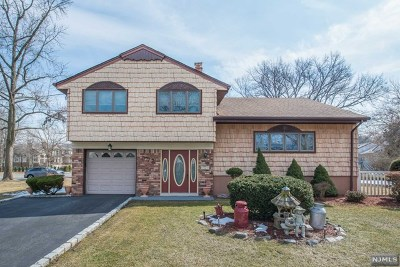 Paramus Single Family Home For Sale: 374 Elmwood Drive