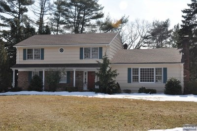 Woodcliff Lake Single Family Home For Sale: 30 Marz Road