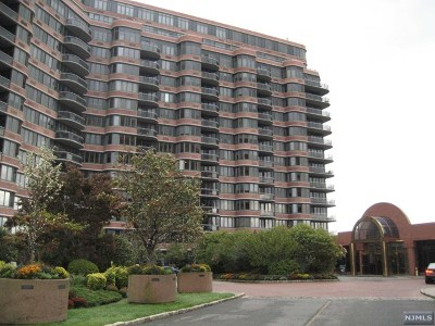 Cliffside Park Condo/Townhouse For Sale: 100 Winston Drive #6e N