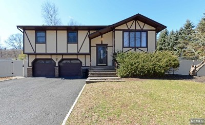 Bergen County Single Family Home For Sale: 56 Kaufman Drive