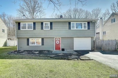 Passaic County Single Family Home For Sale: 24 Wildwood Terrace