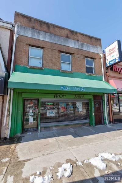 Essex County Multi Family 2-4 For Sale: 1075 Bergen Street