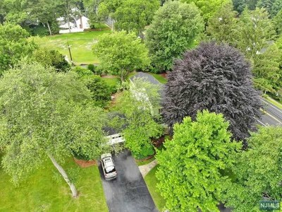Oradell Single Family Home For Sale: 561 Summit Avenue