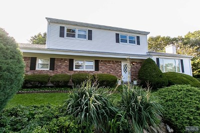 Morris County Single Family Home For Sale: 33 Lincoln Road