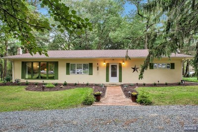 Chester Township Single Family Home For Sale: 366 State Route 24