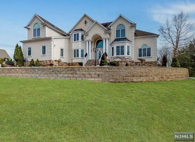 Morris County Single Family Home For Sale: 41 Kanouse Lane
