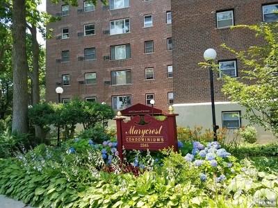 Rental For Rent: 2345 Linwood Avenue #2d