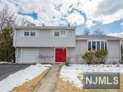 Fair Lawn NJ Single Family Home For Sale: $619,000