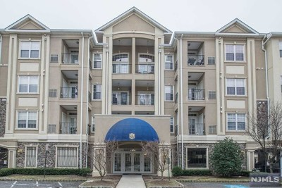 Clifton Condo/Townhouse For Sale: 7105 Ravenscroft Road