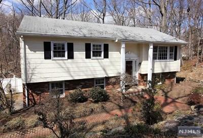 Ringwood Single Family Home For Sale: 83 Buena Vista Drive