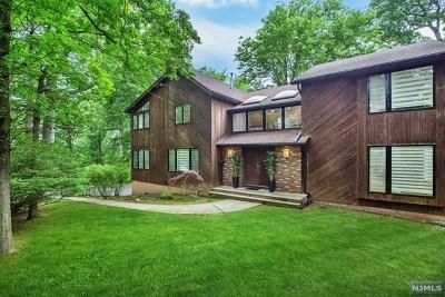 Tenafly Single Family Home For Sale: 151 Hudson Avenue